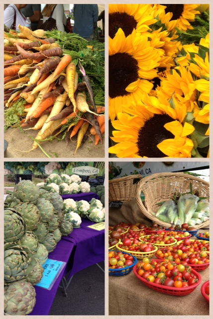 farmers collage 2